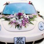 Hoa xe đám cưới 64