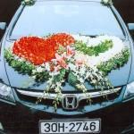 Hoa xe đám cưới 65