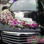 Hoa xe đám cưới 69