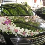 Hoa xe đám cưới 70