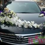 Hoa xe cưới 72