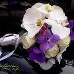 Hoa cô dâu 38