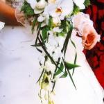 Hoa cô dâu 36