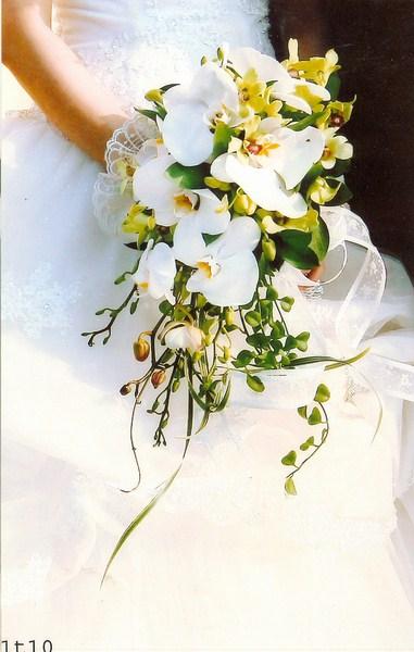 Hoa cô dâu 33