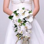 Hoa cô dâu 30