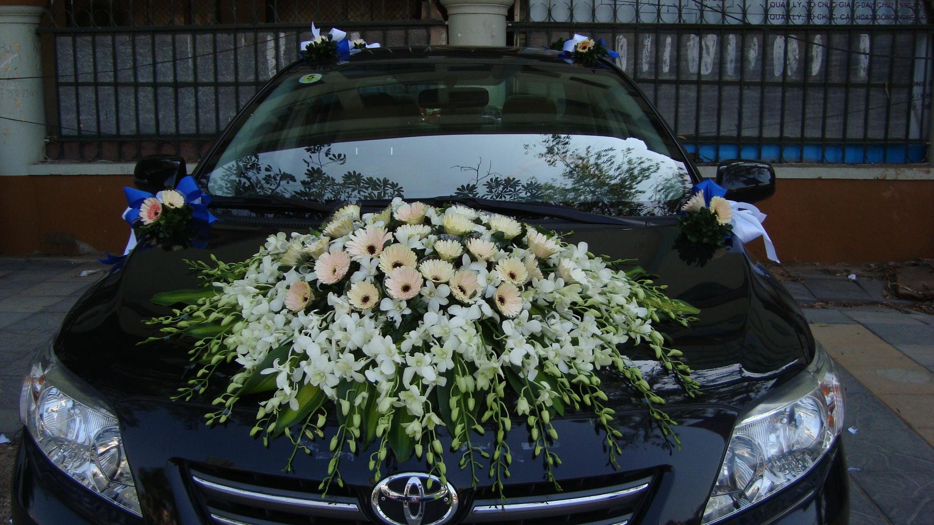 Hoa xe đón dâu 55